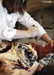 Magnus butchering